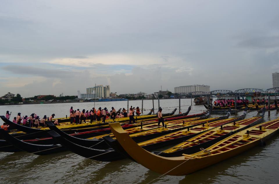 ซ้อมฝีพายเรือพระราชพิธี :